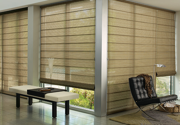 Roller Blinds That Look Like Space : Alustra roller shades hunter douglas