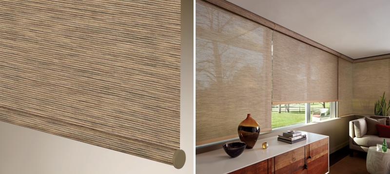 Designer Screen Shades Close-up and Room