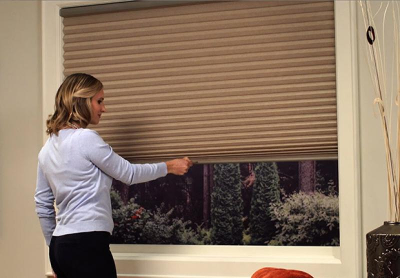 Honeycomb Shades Duette 174 Hunter Douglas